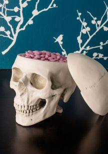 Just thinking outside the box...Oh and I love skulls too!
